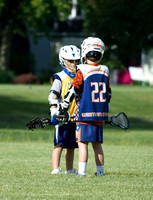 LAKE FOREST U11B GOLD VS WESTERN SPRINGS WHITE
